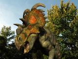 A Albertaceratops Wanders a Cretaceous Forest Stampa fotografica di Stocktrek Images,