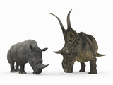 An Adult Diabloceratops Compared to a Modern Adult White Rhinoceros Photographic Print by  Stocktrek Images