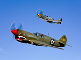 A P-40E Warhawk and a P-51D Mustang Kimberly Kaye in Flight Lámina fotográfica por Stocktrek Images