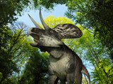 A Zuniceratops Wanders a Cretaceous Forest Photographie par  Stocktrek Images