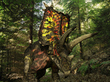 A Colorful Pentaceratops Wanders a Cretaceious Forest Photographic Print by  Stocktrek Images