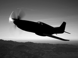 A Grumman F6F Hellcat Fighter Plane in Flight Photographic Print by  Stocktrek Images