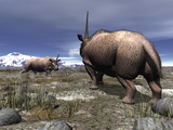 A Pair of Male Elasmotherium Confront One Another Photographic Print by  Stocktrek Images