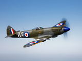 A Supermarine Spitfire MK-18 in Flight Fotografie-Druck von  Stocktrek Images