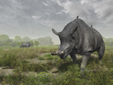 Brontotherium Wander the Lush Late Eocene Landscape Photographic Print by  Stocktrek Images