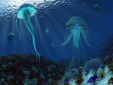 A Swarm of Jellyfish Swim the Panthalassic Ocean Photographic Print by  Stocktrek Images