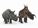 An Adult Einiosaurus Compared to a Modern Adult White Rhinoceros Photographic Print by  Stocktrek Images