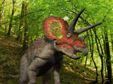 A Colorful Triceratops Wanders a Cretaceous Forest Photographic Print by  Stocktrek Images