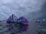 Portuguese Man O' War Swarm over the Surface of a Cambrian Ocean Photographic Print by  Stocktrek Images