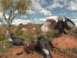 Pleistocene Black Vultures Feed on Carrion Photographic Print by  Stocktrek Images