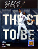 Endy Chavez Autographed 2006 NLCS Game Seven Robbing HR Photograph Photographie