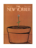 The New Yorker Cover - April 4, 1977 Giclee Print by Robert Tallon