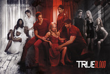 True Blood-Show Your True Colours Plakater