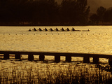 Crew Practice on Lake Banyoles Photographic Print by Tino Soriano