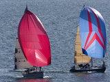 Sailboats Flying Spinnakers Near a Race Finish Line Fotografiskt tryck av Pete Ryan