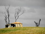 Old Shed in Grassy Field with Dead Stump Next to It Photographic Print by Brooke Whatnall