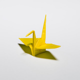 An Origami Crane Photographic Print by Rebecca Hale
