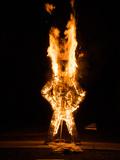 School Project, a Wicker Man Burns Ferociously Photographic Print by Brooke Whatnall