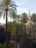Alcazar Palace Gardens with the Giralda Tower in Background Fotografiskt tryck av Krista Rossow
