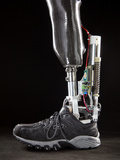 Motorized Springs in a Powered Ankle Push Off Like a Real Leg Photographic Print by Mark Thiessen
