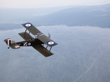 A Replica WWI-Era Sopwith 1-1/2 Strutter Flies over New York State Fotografiskt tryck av Pete Ryan
