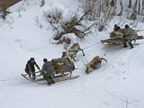 Komi Nomadic Herders Slow Down Sleds from Crushing Reindeer Photographic Print by Gordon Wiltsie