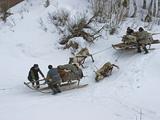 Komi Nomadic Herders Slow Down Sleds from Crushing Reindeer Photographic Print by Gordon Wiltsie