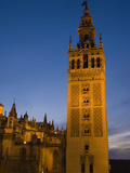 The Giralda Tower and Cathedral De Sevilla at Dusk Fotografiskt tryck av Krista Rossow