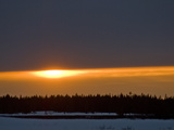 Sunset Glows over a Taiga Forest of Spruce and Birch Trees Photographic Print by Gordon Wiltsie