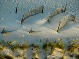 Fences Cast Shadows on Dunes Photographic Print by National Geographic Photographer