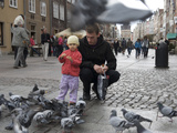 Father and Son Feeding the Pigeons at Market Square Photographic Print by  Keenpress