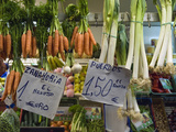 Fruit, Vegetable, Meat, and Fish Market, Mercado De Triana, Sevilla Photographic Print by Krista Rossow