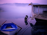 A Rowboat and a Boat with a Goose Shaped Figurehead on Lake Banyoles Photographic Print by Tino Soriano
