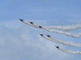 T-6 Texans in Flight Photographic Print by Raul Touzon
