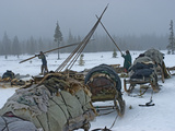 Komi Reindeer Herders Disassemble their Chums to Move Elsewhere Photographic Print by Gordon Wiltsie