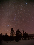 Stars Above Upper Geyser Basin in Yellowstone National Park Photographic Print by Mark Thiessen