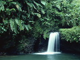 Waterfall in Cloud Forest, Braulio Carrillo National Park, Costa Rica Photographic Print by Michael and Patricia Fogden/Minden Pictures