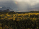 Rainbow over Wilderness Photographic Print by Michael S. Quinton