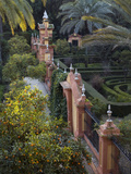The Gardens of the Alcazar Palace, Seville Photographic Print by Krista Rossow
