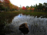 Trees with Fall Foliage Reflected in Eagle Lake Photographic Print by Raul Touzon
