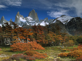 Mount Fitzroy and Lenga Beech (Nothofagus Pumilio) Trees, Los Glaciares National Park, Argentina Photographic Print by Colin Monteath/Minden Pictures