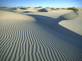 Wind Patterns in Marching Sand Dunes, Magdalena Island, Baja California, Mexico Photographic Print by Tui De Roy/Minden Pictures