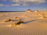 Sand Dunes at the Gulf Islands National Seashore, Florida Photographic Print by Tim Fitzharris/Minden Pictures