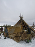 Komi Reindeer Herding Nomads Wrap their Chum with Reindeer Skins Photographic Print by Gordon Wiltsie