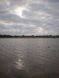 Low Water Levels at Lakeside on an Overcast Day Photographic Print by Brooke Whatnall