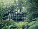 Russell Falls, Mt Field National Park, Tasmania, Australia Photographic Print by Michael and Patricia Fogden/Minden Pictures