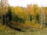 A Fall Scene in Gatineau Park Just North of Ottawa Photographic Print by Kenneth Ginn