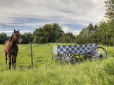 A Horse Stands Near an Old, Checkered, Wooden Wagon Fotografiskt tryck av Pete Ryan
