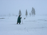 A Nomadic Komi Reindeer Herder Walks in Front of Spruce Trees Photographic Print by Gordon Wiltsie