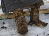 A Komi Reindeer Herder Wears Reindeer Boots and a Malitsa Robe Photographic Print by Gordon Wiltsie